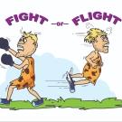 man fight & flight_final_31102017