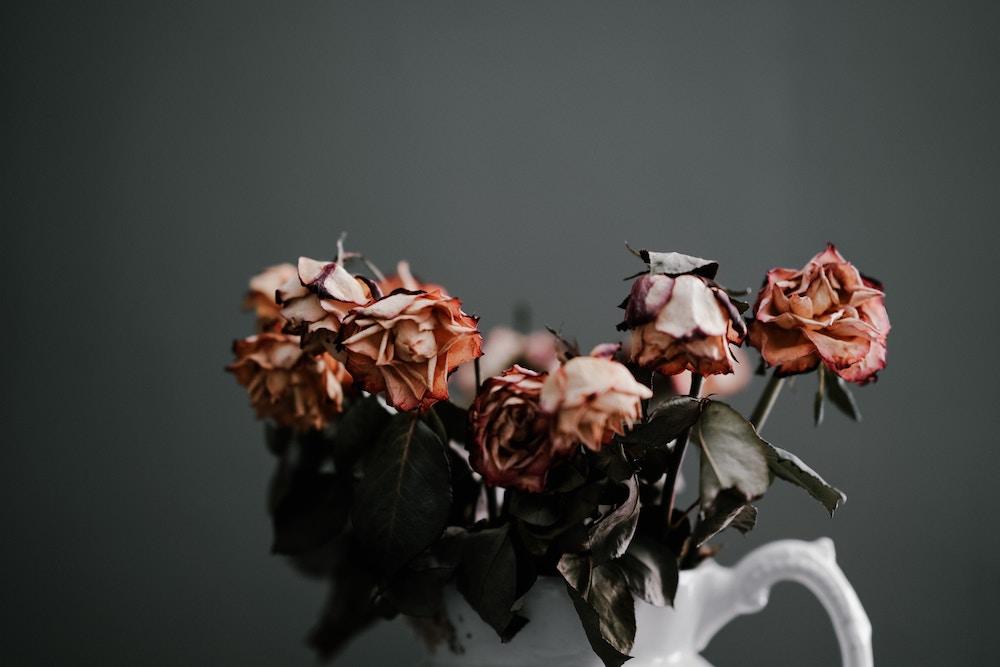 wilted flowers.jpg